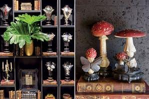 Básicos para Vivir bien en casa: Un poco de glamour y El perfume