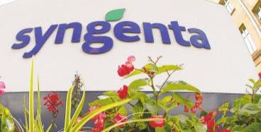 Syngenta rechazó un primer acercamiento de ChemChina en noviembre de 2015.