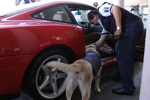 Una Ferrari estuvo entre los coches inspeccionados este lunes. Foto: LA NACION / Darío del Olmo