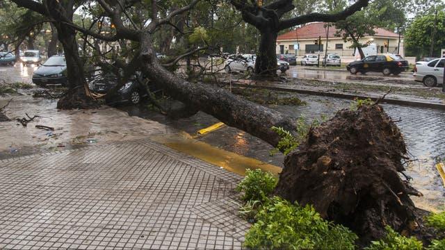 Consecuencias del temporal de ayer en la ciudad de Rosario