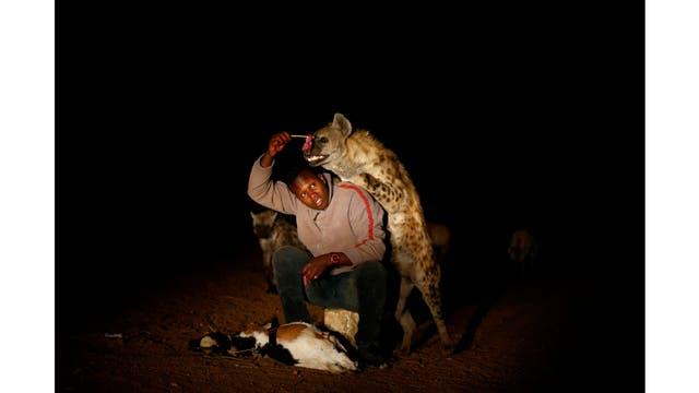 Abbas Yusuf, en su tarea cotidiana de alimentar a las hienas