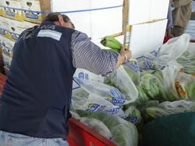 Un inspector de controla el cargamento de bananas declarado como de calidad superior