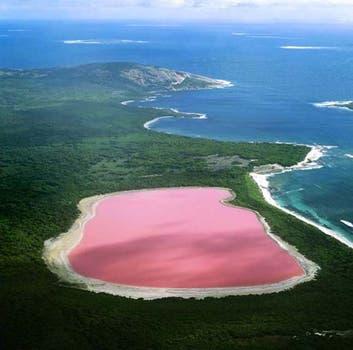 El lago Hiller, en el oeste de Australia, es famoso por sus aguas de color rosa. Foto: BBC Mundo