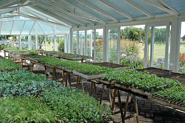 Uno de los espacios de cultivo que hay en la huerta.