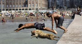 Miles de turistas disfrutaron de la playa en Mar del Plata; chicos y mascotas, los que más se atrevieron al agua