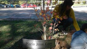 Homenaje a Majo en la facultad donde estudiaba