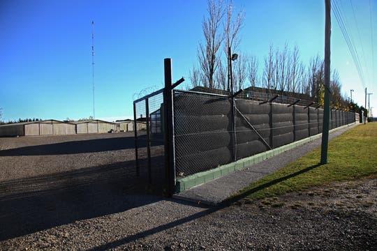 La chacra tiene una dimensión de cuatro hectáreas y está fuertemente custodiada. Foto: LA NACION / Horacio Córdoba