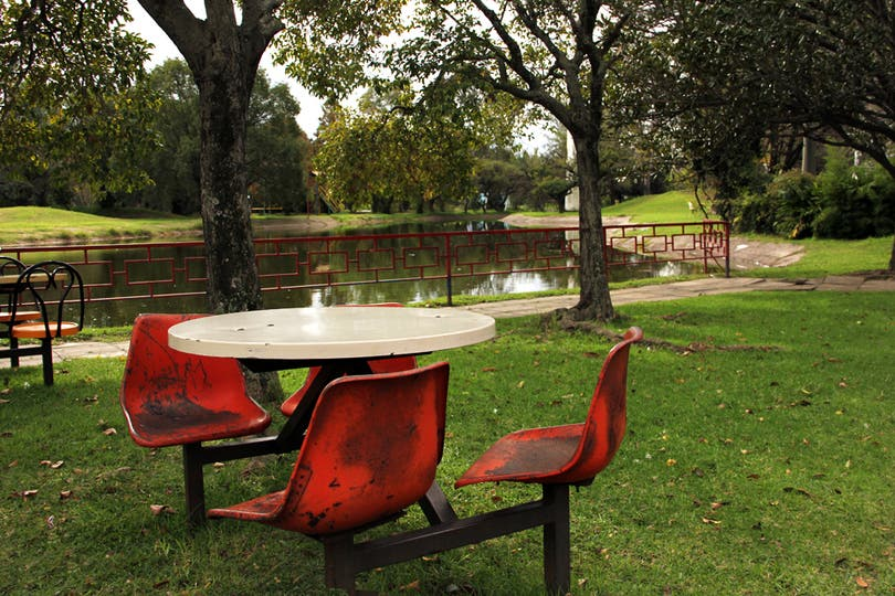 Aunque el Gobierno de la Ciudad mantiene cuidado los espacios verdes pocas son las personas que los utilizan para esparcimiento. Foto: LA NACION / Mauricio Giambartolomei