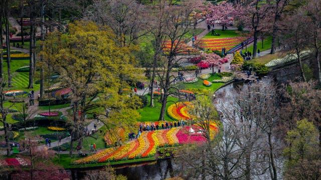 Turistas visitan el jardín de primavera de Keukenhof en Lisse