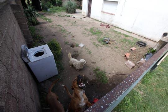 El fondo de la propiedad. Foto: Enviado especial / Guadalupe Aizaga