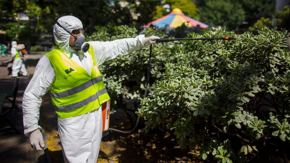 Fotos de Virus zika