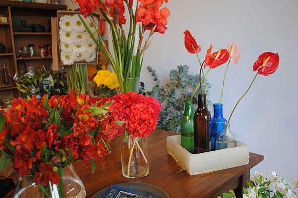 ¿Qué flor te gusta más?. Foto: Cecilia Wall
