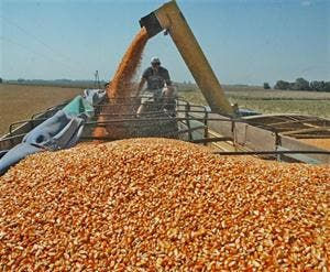 Suba para la cosecha en Córdoba