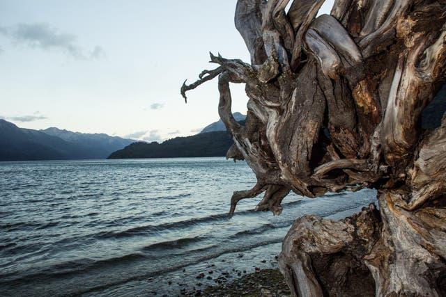 Lago Rivadavia. Foto: Gustavo Castaing