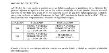 Extracto de la reglamentación de AFIP
