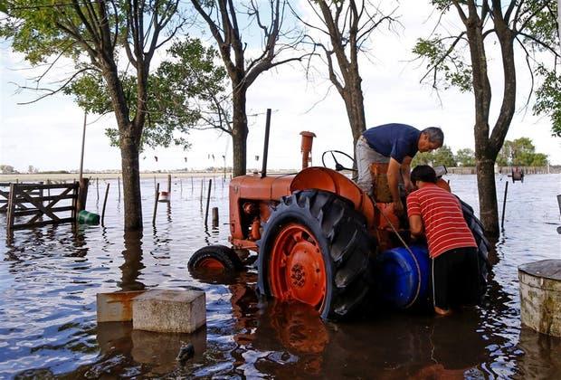 Las situaciones productivas suelen ser heterogéneas en el sector agrícola