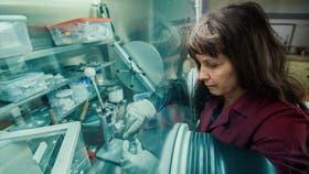 La galardonada ingeniera química Fabiana Gennari, en plena tarea