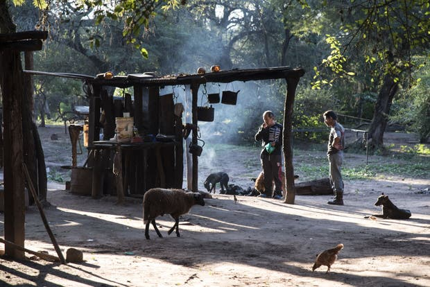 Difícil convivencia. Pequeños productores, como la familia Ledesma, fueron amenazados por los narcos