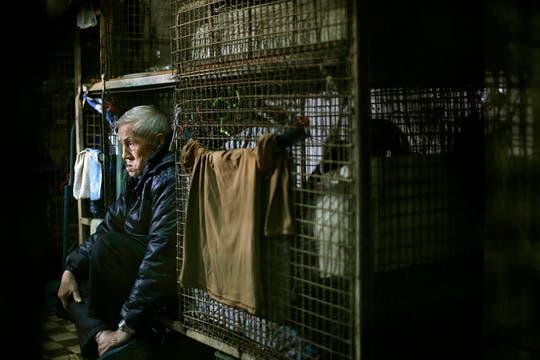 Las jaulas van apiladas unas sobre otras. Foto: AP