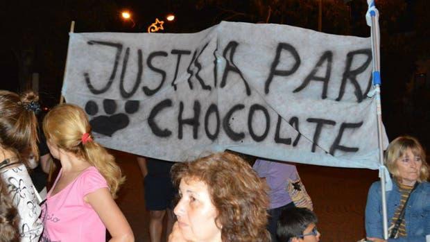 Justicia para Chocolate: vecinos de Córdoba marcharon por la muerte del perro
