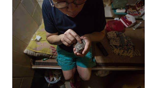 Kitty Au juega con su hámster en su casa en Hong Kong