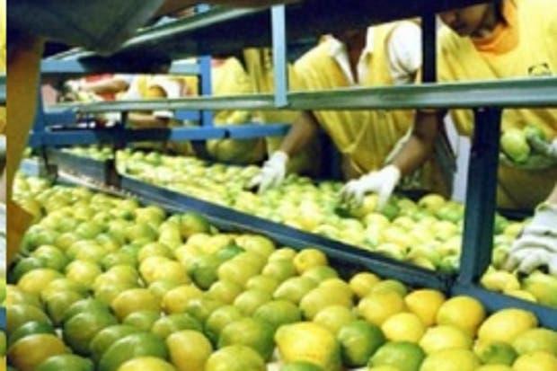 Citrícola San Miguel realizó una oferta por una compañía frutícola peruana