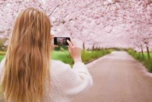 Cómo sacar buenas fotos con tu celular