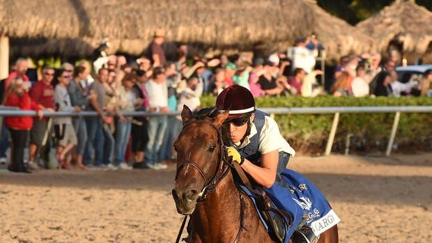 El trabajo del caballo argentino