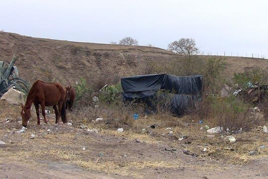 El paisaje de casas humildes que suele observar sobre la Quebrada. Foto: lanacion.com / Constanza Longarte