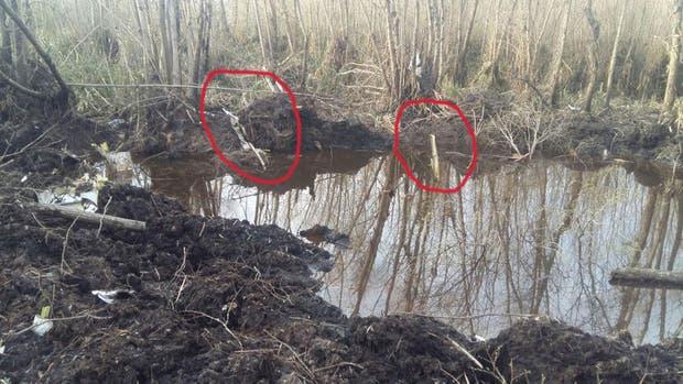 El Gobierno confirmó el hallazgo de restos humanos en el avión