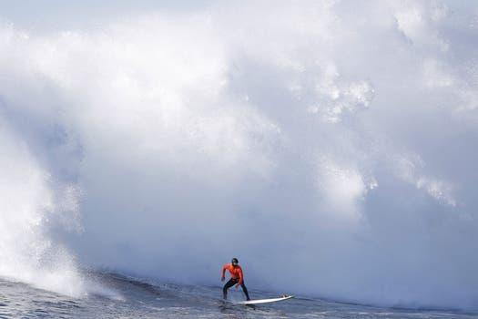 Esta no se si va en a) Fotos flasheras b) Y vos en la oficina o c) Esto va a doler. Foto: Reuters