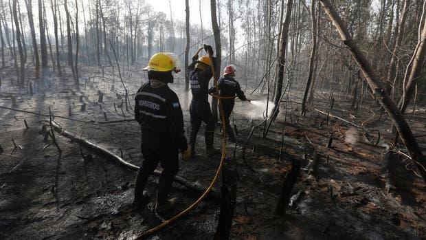 Desolación tras la tarea de los bomberos de apagar el incendio en el bosque
