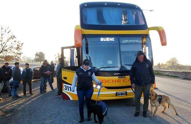 Seis kilos de cocaína fueron detectados con el apoyo de dos perros antidrogas