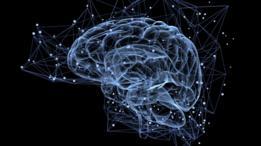Con simples ejercicios se puede aprovechar al máximo el cerebro.
