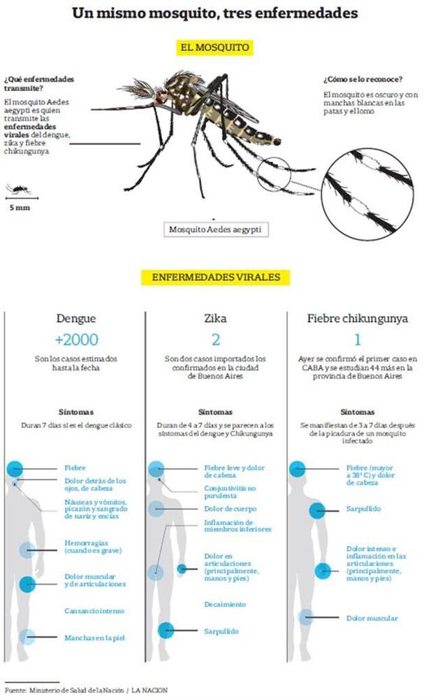 Fuente: Ministerio de Salud de la Nación/ LA NACION