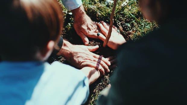 El servicio fúnebre quiere convertir los cementerios en bosques
