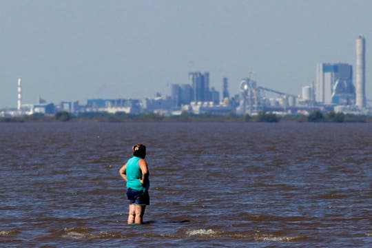 Una mujer mira a la planta de celulosa Botnia de Finlandia situada en la margen uruguaya del río Uruguay. Foto: AP