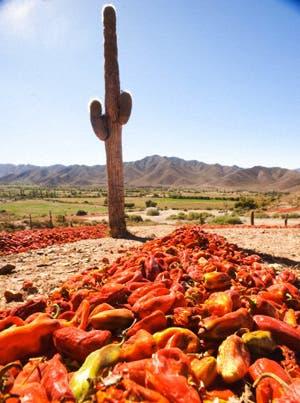 Hay materia prima y hay profesionales capacitados, entonces por qué la producción local de alimentos no se suma al boom de la gastronmía regional