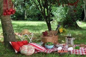 El kit perfecto para salir de picnic