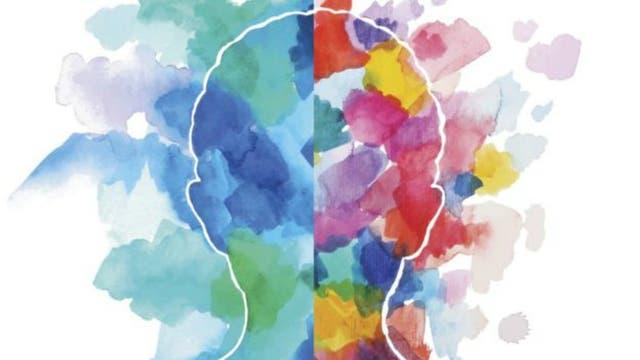 Mientras que una persona puede obtener un puntaje elevado por su visión y capacidad organizativa, puede a la vez mostrar un desempeño pobre en áreas de inteligencia emocional
