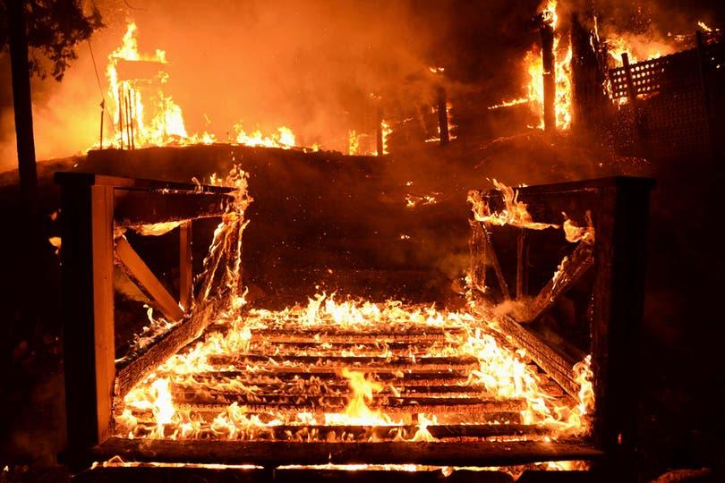 El fuego llegó a cubrir un área de 20.000 hectáreas. Foto: Reuters