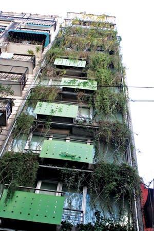 En las grandes ciudades del mundo, los hoteles sustentables ya no son una rareza, sino más bien un gran atractivo del mercado turístico. A nivel local, poco a poco, empieza a haber más espacio para esta tendencia.