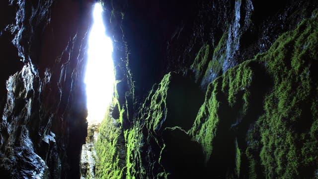 Hubei Shennongjia. La Unesco estudia incluir en su inventario bienes culturales para proteger. Naturaleza. Foto: Sitio oficial de la Unesco