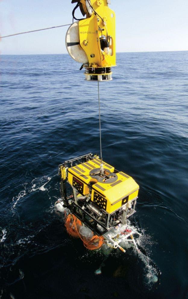 Se utilizan robots marinos para encontrar la parte dañada y extraer el cable del mar.