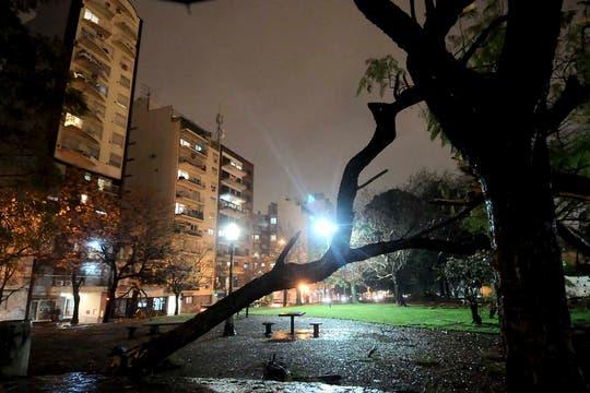Temporal de lluvia y viento en Buenos Aires. Foto: DyN