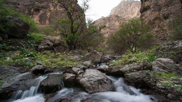 Mountain Ecosystems of Koytendag. La Unesco estudia incluir en su inventario bienes culturales para proteger. Naturaleza. Foto: Sitio oficial de la Unesco