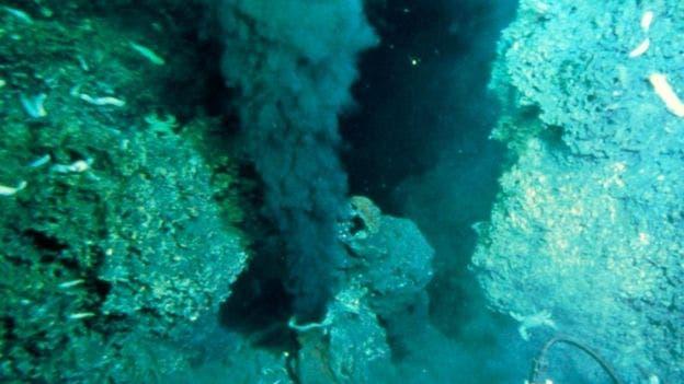 Las ventosas hidrotermales son el hogar de diversos ecosistemas