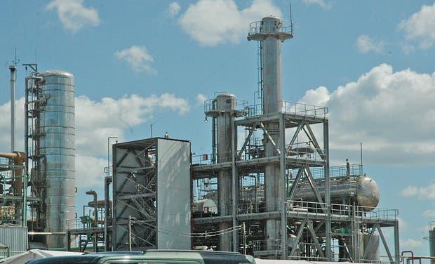 El producto argentino cubría casi el 20% de la demanda de EE.UU.