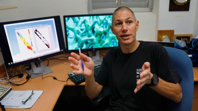 Maoz Fine, profesor de biología marina de la universidad de israelí Bar Ilan, está realizando investigaciones sobre el Golfo de Eilat, en el Instituto Interuniversitario de Ciencias del Mar en Eilat Israel