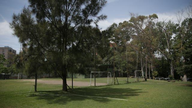 En todo el predio del club, hay 320 árboles y el 20 % de ellos está en el espacio que corre peligro. Los socios cuestionan que, con la construcción de torres, se perderían centenarias especies y que el entorno de la institución perdería mucho espacio verde y luz solar